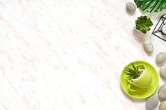 Vlak leg van creatief gekleurd marmeren bureau met groene kop, stenen en succulents achtergrond Stock Afbeelding