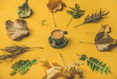 Vlak-leg van espressokop die door droge gevallen boombladeren wordt omringd Stock Foto