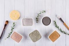 Vlak leg, Verschillende het poeder natuurlijke ingrediënten van de kleimodder voor eigengemaakt gezichts en lichaamsmasker of sch stock foto