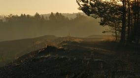 Vlak na zonsopgang Omgeving van de reserve dichtbij de stad van Tarnowskie GÃ ³ ry polen royalty-vrije stock afbeeldingen