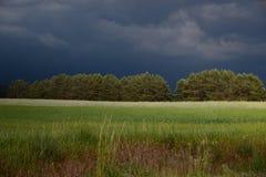 Vlak vóór de zomer storm_1 royalty-vrije stock fotografie