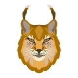Vlakke de illustratiestijl van het lynx hoofdgezicht Royalty-vrije Stock Afbeeldingen