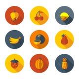 Vlakke fruitpictogrammen Royalty-vrije Stock Afbeeldingen