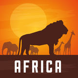 Vlakke illustratie over het ontwerp van Afrika Royalty-vrije Stock Foto
