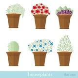 Vlakke ontwerpreeks van huisinstallatie en bloem met bloempot Stock Afbeelding