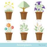 Vlakke ontwerpreeks van huisinstallatie en bloem met bloempotreeks Royalty-vrije Stock Afbeeldingen