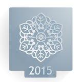 Vlakke sneeuwvlok 2015 Stock Foto's