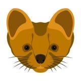 Vlakke stijl van de hermelijn de hoofd vectorillustratie Royalty-vrije Stock Fotografie