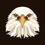 Vlakke stijl van de het gezichts vectorillustratie van Eagle de hoofd Stock Foto's