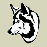 Vlakke stijl van de wolfs de hoofd vectorillustratie Royalty-vrije Stock Foto