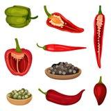 Vlakke vectorreeks peperpictogrammen Verse groente en culinaire specerijen Aromatisch kruid Groenten: snijbonen, wortelen en bloe vector illustratie