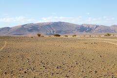 Vlakke woestijn Stock Foto's