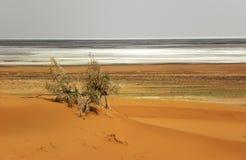 Vlakke woestijn en Zout royalty-vrije stock foto's