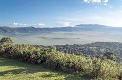 Vlakte in Tanzania Stock Foto