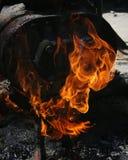 vlam Royalty-vrije Stock Afbeelding