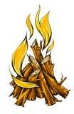 Vlambrand van kampvuur met brandhout Stock Foto
