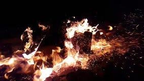Vlammen die van brand langzame motie branden stock video