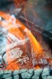 Vlammen en as Stock Afbeeldingen