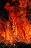 Vlammen en borstel Royalty-vrije Stock Afbeeldingen
