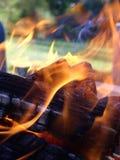 Vlammen en steenkolen Royalty-vrije Stock Foto's