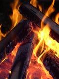 Vlammen en steenkolen Stock Foto