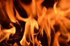 Vlammen, het knarsen en brandhout 3 Stock Fotografie
