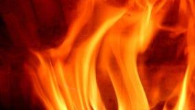 Vlammen van brand in open haard stock videobeelden