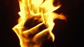 Vlammende dicht omhoog Geschotene Toorts stock footage
