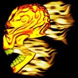 Vlammende Schedel 1 Stock Afbeelding