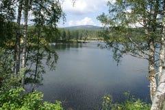 Vlasina 2015 βουνών Στοκ Φωτογραφίες