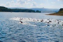 Vlasina Lake, Serbia - august,5.2018: Swimming race on Vlasina triathlon. On Sunday, August 5, the 4th Triathlon Self-Recovery Triathlon was held. The triathlon stock photo
