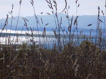 Vlasinsko jezioro w wszystkie swój pięknie Obraz Stock