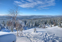 The Vlassky Ridge in the Jizera Mountains. Photograph taken during a trip in the Jizera Mountains in the january 2009. Cross-country skiing is very popular in Royalty Free Stock Photos
