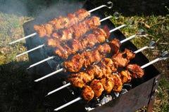Vlees bij de grill Royalty-vrije Stock Afbeelding