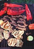 Vlees en groenten bij de grill Royalty-vrije Stock Foto's