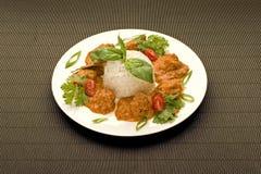 Vlees met rijst stock foto