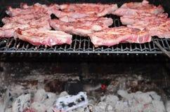 Vlees op BBQ Royalty-vrije Stock Foto's