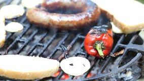 Vlees op de barbecue stock video