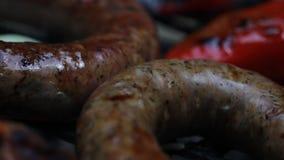 Vlees op de barbecue stock videobeelden