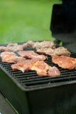 Vlees op de grill Royalty-vrije Stock Foto's
