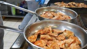 Vlees op de grill De gebraden stukken lapjes vlees liggen op de grill, geroosterde groenten, uien, kersentomaten, paddestoelen en stock footage