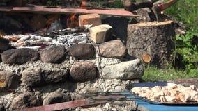 Vlees op spitten en de vlammen van de vuurbrand in tuinopen haard Nadrukverandering 4K stock videobeelden