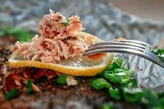 Vlees van gebakken vissen royalty-vrije stock afbeelding