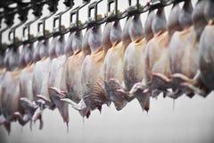 Vlees van pluimveeverwerking Royalty-vrije Stock Foto's