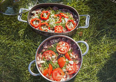 Vlees voor BBQ in pannen op gras Royalty-vrije Stock Foto's