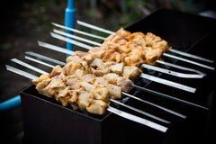 Vleesbarbecue - varkensvlees stock foto's