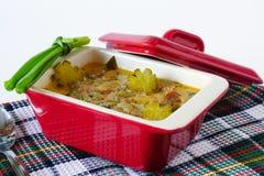 Vleeshutspot met groenten in het zuur in een ceramische stewpot stock afbeelding