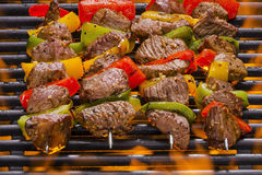 Vleeskebabs op een Hete Vlammende Grill Stock Afbeeldingen