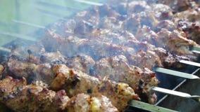 Vleespennen met rook bij een picknick stock videobeelden