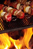 Vleespennen op de grill Royalty-vrije Stock Afbeeldingen
